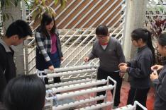 水管式水耕系統種菜活動圖片