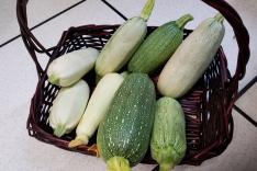 有機耕種收割及烹調農作物活動相片