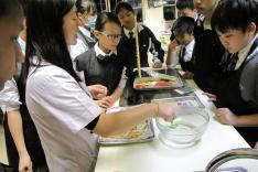 迎聖誕親子美食製作班「薑餅人」活動相片