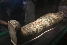 參觀「永生傳說-透視古埃及文明」展覽活動相片